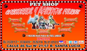 pet shop cachorros y mascotas felices guarder